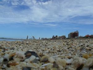 Strand van Villa gesell