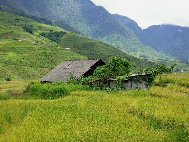 Sapa Hmong village